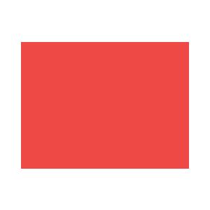 The Martin Agency